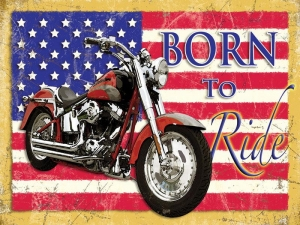 "Metalowa tabliczka retro 30 x 40 cm ""Born to Ride"""