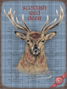 "Metalowa tabliczka retro 30 x 40 cm ""Scottish Red Deer"""