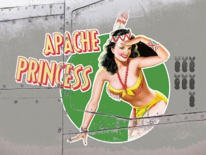 "Metalowa tabliczka retro 15 x 20 cm ""Apache Princess - pin up girl"""